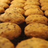 Hazelnut Chocolate Chip Cookies | Bake or Break