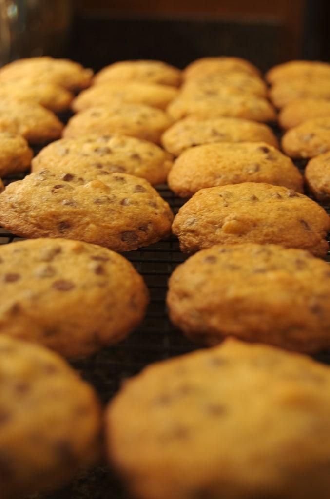 Hazelnut Chocolate Chip Cookies | Bake or Break