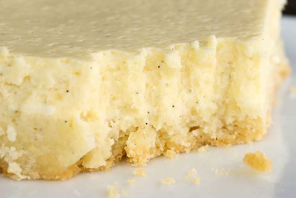 Vanilla Bean Cheesecake Bars | Bake or Break