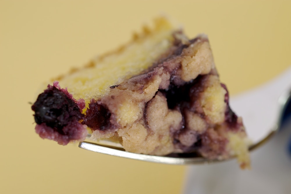 Blueberry Crumb Cake is a wonderfully simple and delicious cake that showcases fresh blueberries. - Bake or Break