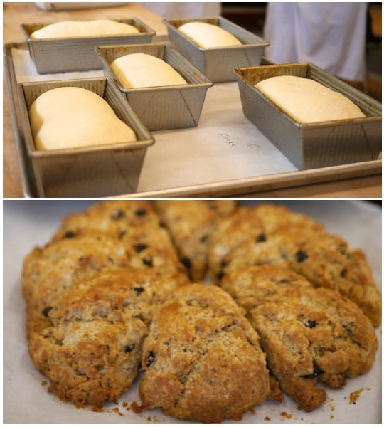 Bread and Scones at King Arthur Flour | Bake or Break