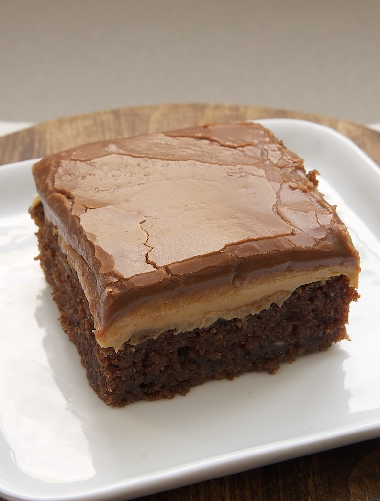 Peanut Butter Fudge Cake Recipe — Dishmaps