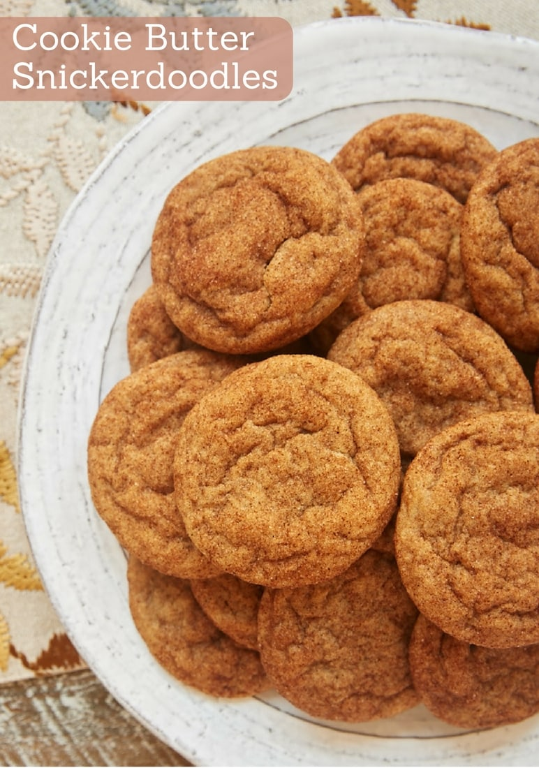 Sweet, spiced cookie butter adds such fantastic flavor to Cookie Butter Snickerdoodles. These are such a crowd-pleaser! - Bake or Break