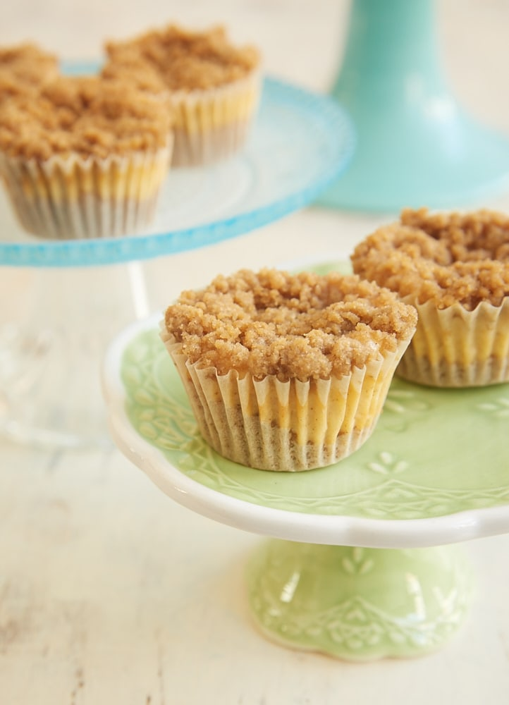 Mini Cinnamon Crumb Cheesecakes are bite-size treats full of fantastic cinnamon flavor. - Bake or Break