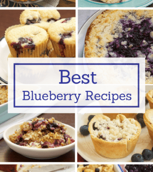 Indulge all your blueberry cravings with the best and most popular blueberry recipes from Bake or Break!