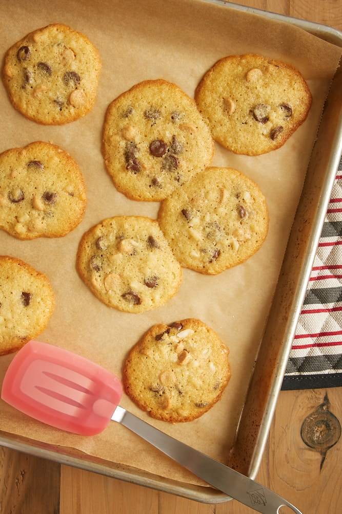 What makes cookies spread? Find out the reasons and learn how to prevent it with these cookie baking tips from Bake or Break.